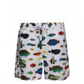Swim Shorts Tropical Fish Badshorts Vit DEDICATED