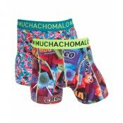 2 Pack Boxer Candy 04 Multi