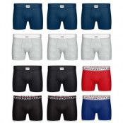 Frank Dandy 12-Pack Boxer Mixed Solids (XL)