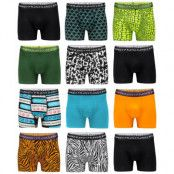 Frank Dandy 12-Pack Boxer Mixed Styles & Solids (M)
