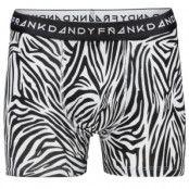 Frank Dandy Boxer Zebra * Fri Frakt *